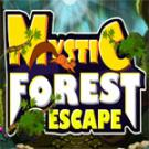 Play Mystic Forest Escape