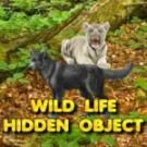 Play Wild Life Hidden Object